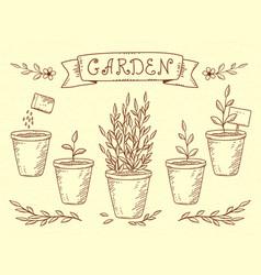 Set of plant in pots vector