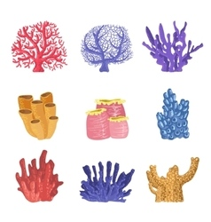 Different Types Of Tropical Reef Coral Collection vector