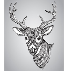 Hand drawn horned deer with high details ornament vector image vector image