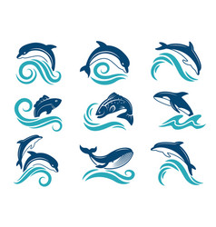 Pictures dolphins and other marine animals vector