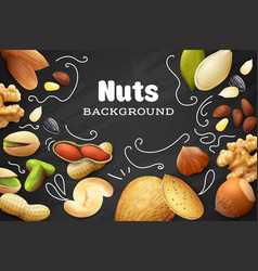realistic nuts background vector image