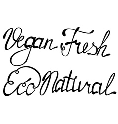 Set of vegan eco natural fresh lettering vector image
