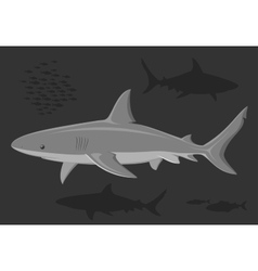 Sharks in the deep sea vector