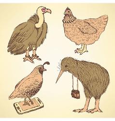 Sketch fancy birds in vintage style vector