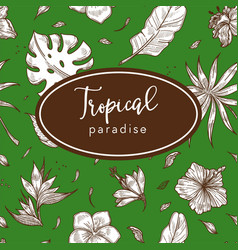 tropical paradise leaves and flowers exotic plants vector image