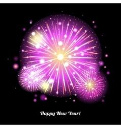 Festive Fireworks Holidays Background vector image