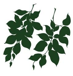 Decorative branches vector