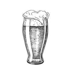 hand drawn glass with foam bubble beer vector image