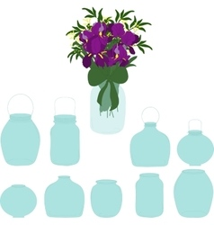 Jars set bouquet of irises in a jar vector image