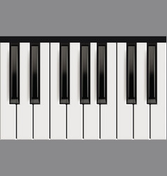 Piano keys realistic musical instrument for jazz vector