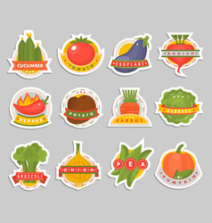 vegetables label logo badge design template vector image