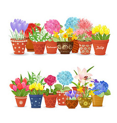 lovely collection different flowers planted in vector image