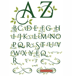 Ornate swash alphabet with leaves vector