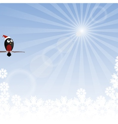 Winter background with rays and bullfinch vector image