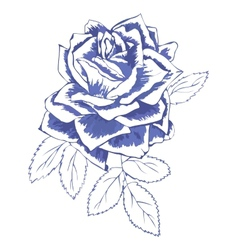 blue rose vector image