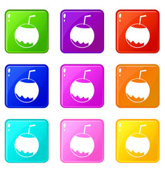 Coconut with straw icons 9 set vector