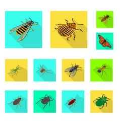 design nature and wildlife symbol vector image
