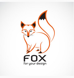 fox design on white background wild animals fox vector image