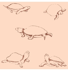 Turtles Pencil sketch by hand Vintage colors vector
