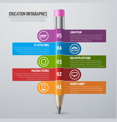 business learning and school education vector image