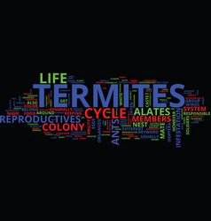 life cycle of termites text background word cloud vector image vector image