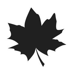 maple leaf black silhouette autumn fallen object vector image