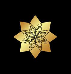 Circular geometric ornament on black background vector