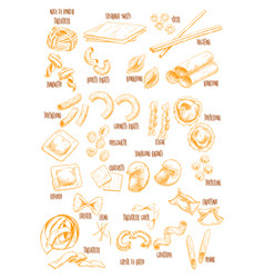italian pasta sketch names icons set vector image
