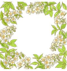 Jasmine branch frame vector