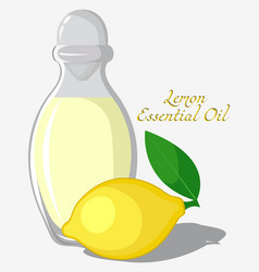 lemon essential oil vector image