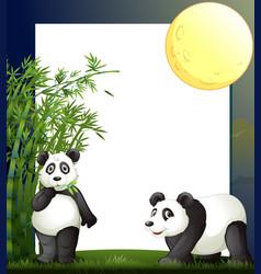 panda and bamboo border template vector image