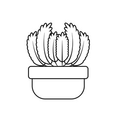 potted succulent plants line style icon vector image