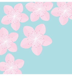 Sakura flowers Japan blooming cherry blossom Blue vector