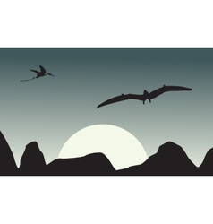 Silhouette of pterodactyl on sky scenery vector