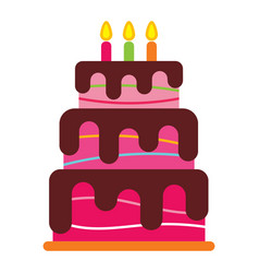 sweet birthday cake with three burning candles vector image