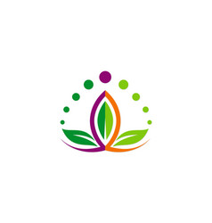 lotus flower beauty colorful logo vector image vector image