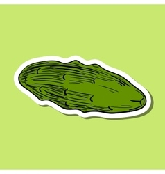 ColoredCucumber vector image