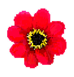red pixel flower art vector image
