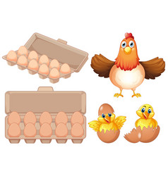 Set of fresh egg and chicken vector