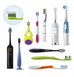 toothbrushe dental hygiene tooth brush for vector image