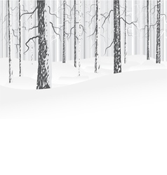 Winter deciduous forest vector