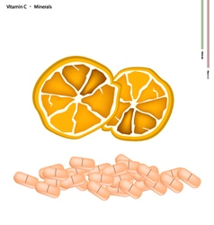 Ripe Orange with Vitamin C on White Background vector image