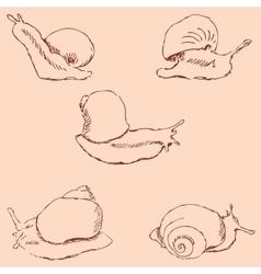Snails Pencil sketch by hand Vintage colors vector image