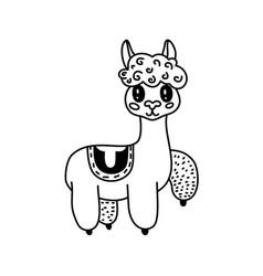 doodle llama character vector image