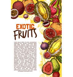 fruit shop sketch poster of exotic fruits vector image