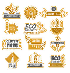 gluten free badges eco bio farm fresh natural vector image