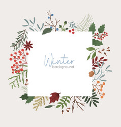winter botanical background xmas color vector image