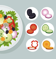 salad vegetables products natural food vector image vector image