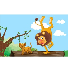 a lion and cub vector image