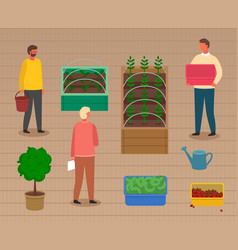 Group people caring about sprouts in boxes vector